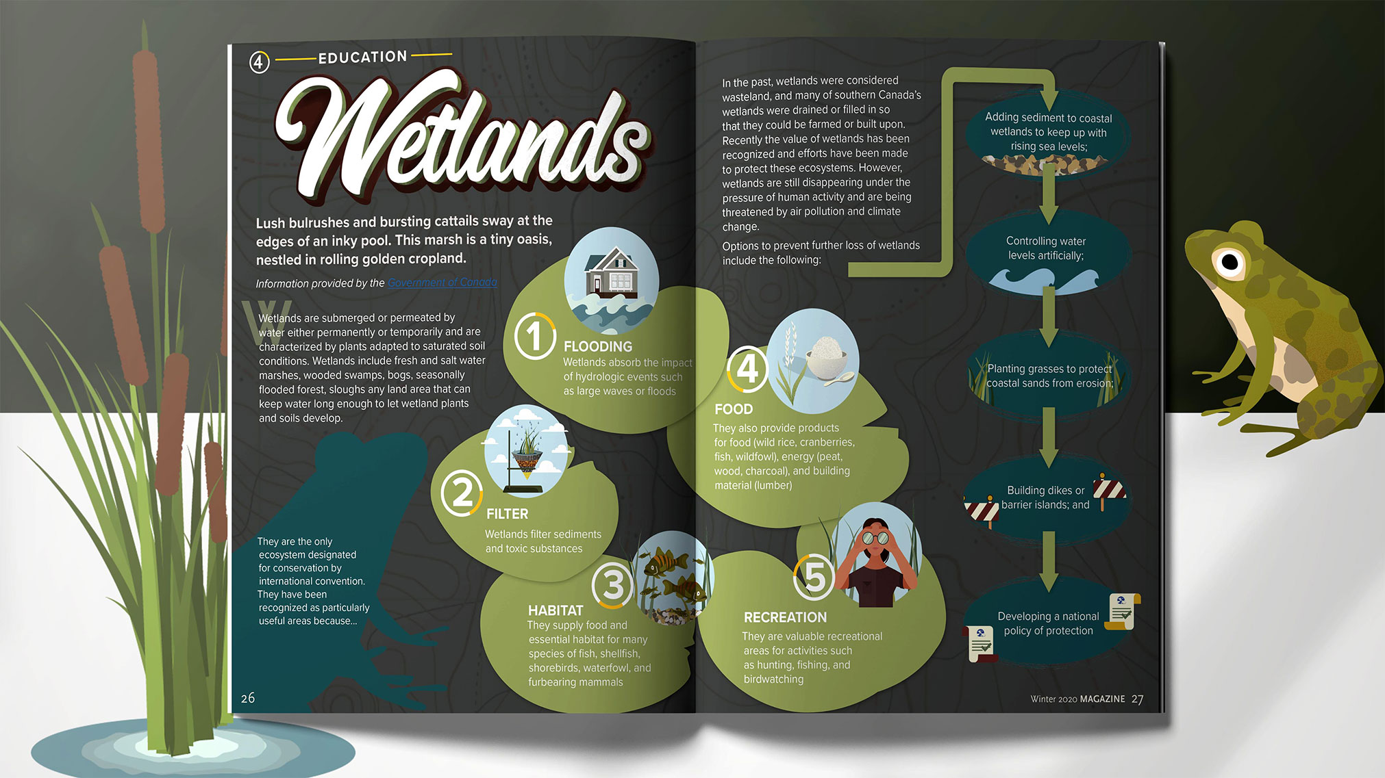 This project depicts an interactive PDF and a short animated explainer video. The content was based on the information found on the Government of Canada website.