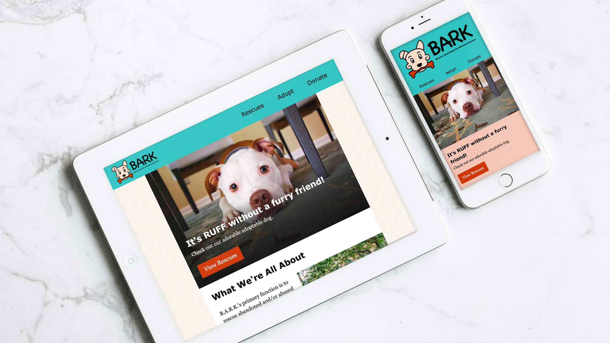 Bytown Association for Rescued Kanines (B.A.R.K.), is an Ottawa-based no-kill animal rescue in need of a website update to better capture the amazing stuff they do in the community.