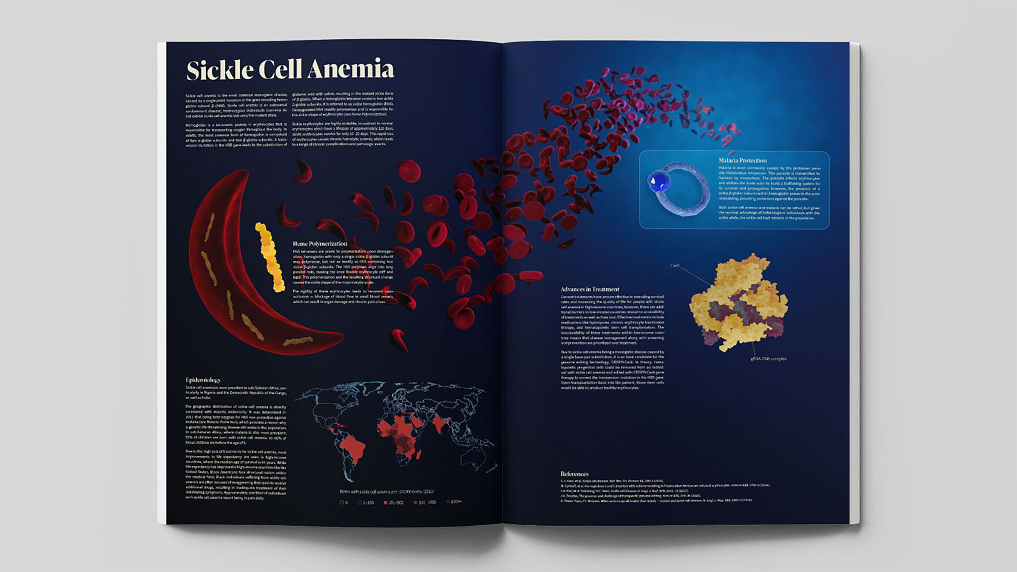 An infographic about sickle cell anemia I wrote and designed as a passion project. 3D models were created in Cinema 4D.