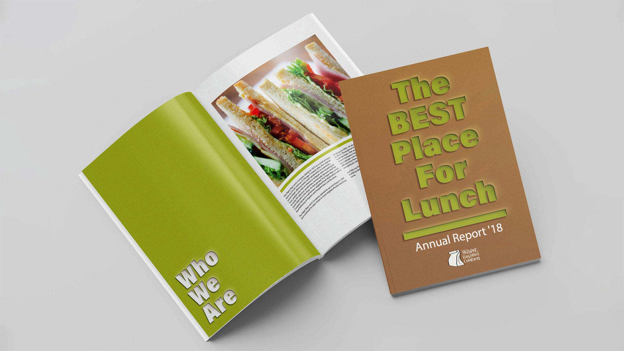 Designed an annual report book for